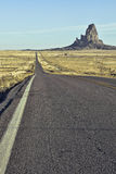 Volanic érodé branchent l'Arizona Photos libres de droits