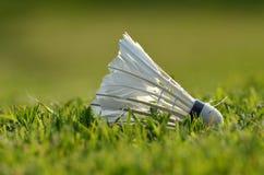 Volant de badminton sur la pelouse verte Image stock