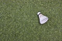 Volant sur l'herbe verte Images libres de droits