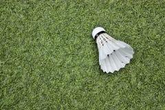 Volant sur l'herbe verte Photo libre de droits