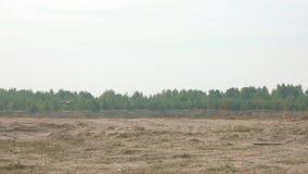 Volar un abejón del helicóptero sobre un campo por día escena Vuelo del helicóptero en el campo sobre la tierra metrajes