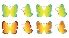 Volata delle farfalle Immagini Stock