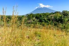 Volcán, arbolado y prado del Agua fotografía de archivo