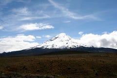 Volcán coronado de nieve Fotos de archivo