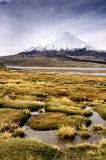 Volcán de Parinacota en Chile Fotografía de archivo libre de regalías