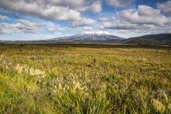 Volcán de Ruapehu del soporte en Nueva Zelanda Fotos de archivo libres de regalías