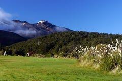 Volcán de Ruapehu del soporte, Nueva Zelanda Foto de archivo