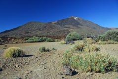 Volcán de Teide Fotos de archivo libres de regalías