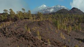 Volcán de Teide cubierto con el fenómeno raro de а de la nieve para las islas Canarias almacen de metraje de vídeo