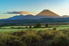 Volcán del cono, salida del sol, soporte Ngauruhoe, Nueva Zelanda 24 Imagen de archivo