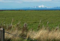 Volcán del Mt Illiama a través del campo de hierba y del cocinero Inlet Foto de archivo