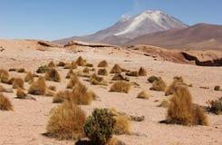 Volc?n en el Altiplano de Bolivia imagen de archivo