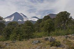 Volcan亚伊马火山在Conguillo nacional公园,智利 免版税库存照片
