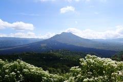 Volcan actif Images libres de droits