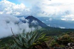 Volcan actif Yzalco dans les nuages Images libres de droits
