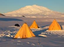 Volcan antarctique Images stock