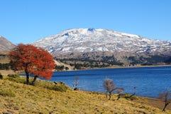 Volcan Copahue, Argentina. El Volcán Copahue ubicado en cercanías de las localidades de Caviahue y Copahue en la provincia de Neuquén, Argentina Stock Photo