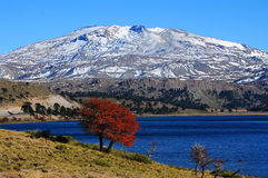 Volcan Copahue, Argentinien Stockfoto