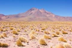 Volcan dans le désert Photos libres de droits