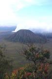 Volcan de Bromo Photos stock
