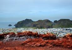 Volcan de Heimaey photos libres de droits