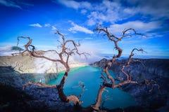 Volcan de Kawah Ijen avec les arbres morts sur le fond de ciel bleu dans Jav Photo libre de droits
