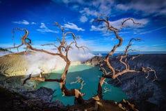 Volcan de Kawah Ijen avec les arbres morts sur le fond de ciel bleu dans Jav Photos libres de droits