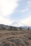 Volcan de Lanin, Patagonia Photos libres de droits