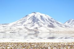 Volcan de Lascar photo stock