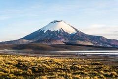 Volcan de Parinacota, lac Chungara, Chili Photos libres de droits