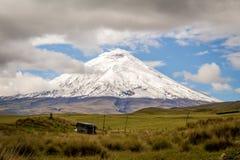 Volcan du Cotopaxi Photographie stock libre de droits