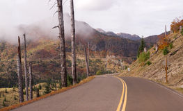 Volcan endommagé toujours de Mt St Helens de zone de souffle de paysage Photographie stock