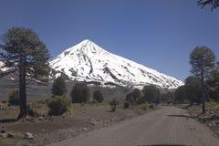 Volcan Lanin,巴塔哥尼亚,阿根廷 库存照片