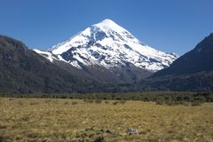 Volcan Lanin, Patagonia, Argentina Arkivfoton