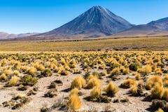 Volcan Licancabur. Atacama Desert, Chile Royalty Free Stock Image