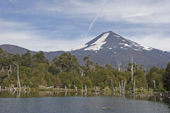 Volcan Llaima στο πάρκο nacional Conguillo, Χιλή Στοκ Εικόνα