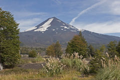 Volcan Llaima in Conguillo nacional park, Chile Royalty Free Stock Photo