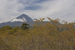 Volcan Llaima in Conguillo nacional park, Chile Royalty Free Stock Images