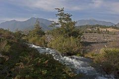 Volcan Llaima nel parco di nacional di Conguillo, Cile Fotografia Stock Libera da Diritti