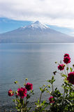 Volcan Osorno и озеро Llanquihue, чилеански стоковое изображение rf