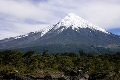 Volcan Osorno in Chile Stock Photos