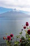 Volcan Osorno och Lake Llanquihue, Chile Royaltyfri Bild