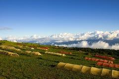 volcan rica för parque för costairazunacional Arkivfoton