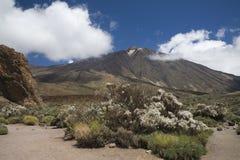 Volcan Teide Image stock