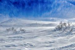Volcanes de la península de Kamchatka, Rusia. Foto de archivo libre de regalías