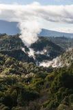 Volcanes en valle termal en Rotorua Imagen de archivo libre de regalías