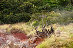Volcanic Activity, Costa Rica Royalty Free Stock Photography