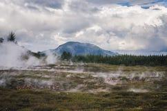 Volcanic area near Rotorua, NZ Stock Photos
