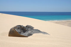 Volcanic black stone in sand, Fuerteventura Stock Photo