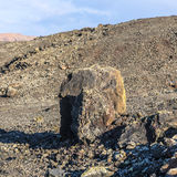 Volcanic bomb in front of volcano Montana Colorada in Lanzarote, Stock Photo